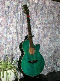 Guitar_aso